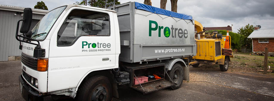 protree truck